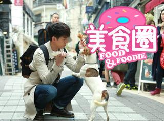 【美食圈】胡歌街头逗个狗,居然把我看饿了!