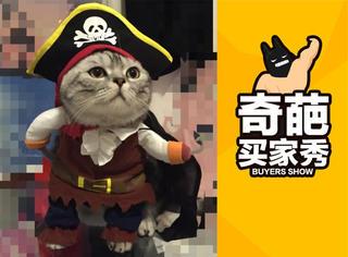 【奇葩买家秀】萌萌哒猫咪也可以当海盗船长!