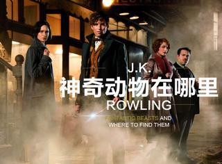 《哈利·波特》外传《神奇动物在哪里》,那个奇幻的魔法世界又要回来了!