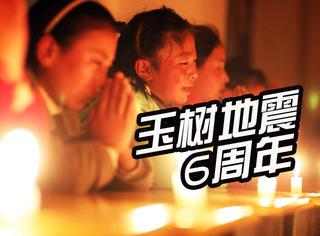 玉树地震6周年:格桑花开,生命不败
