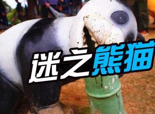 """日本各地的诡异""""熊猫"""",大概是个迷一样的存在"""