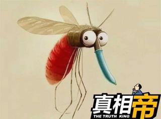 【真相帝】当今世界,杀人最多的动物竟然是蚊子!