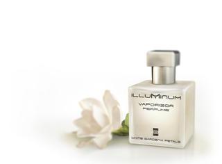 栀子花的香气就是初夏的香味!【到底买哪款】