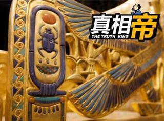 【真相帝】古埃及人为什么把屎壳郎奉为守护神?