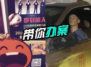 """CSI犯罪现场:橘子君去当了一回侦探,后悔没带""""元芳""""!"""
