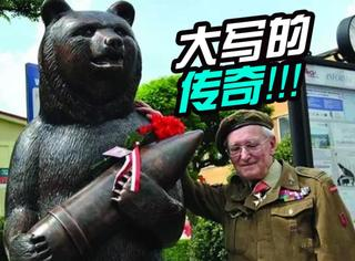 这只熊的一生可能比你的人生还要传奇!