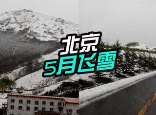 北京五月下雪了,网友:难道是在给魏则西叫冤?