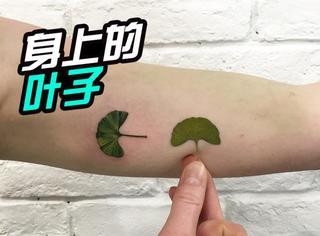 想纹身吗不撞图案吗?一片树叶就能帮到你!