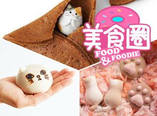 那些猫奴必备的小零食,心都被萌化啦!