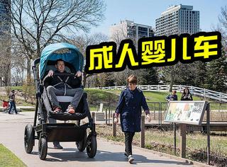 美国新出成人婴儿车,大人们终于知道了宝宝的感受!