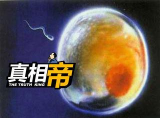 【真相帝】精子和卵子结合瞬间会发光,原来小时候我们也曾万丈光芒!