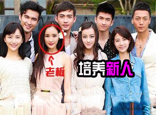 其实《翻译官》完全可以改名叫《黄轩、杨幂和她的公司后辈们》