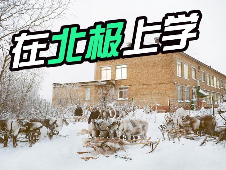 在北极圈,上学是一件这么奢侈又好玩的事_橘子娱乐