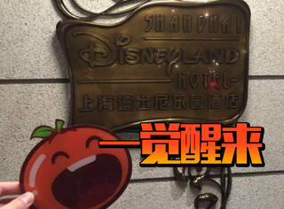 一觉醒来橘子君告诉你:住在迪士尼公主房到底多甜蜜!