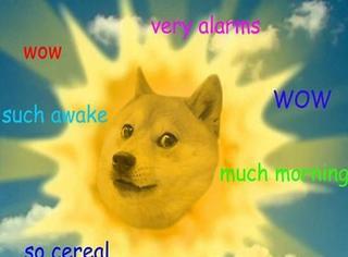 Doge神烦狗身世之谜:原来它是一条有故事的柴犬!