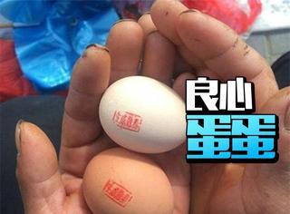 65岁老汉卖盖章土鸡蛋,被网友赞良心蛋蛋