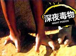 【深夜毒物】非洲神秘龙虾族,只有两个脚趾的神秘民族