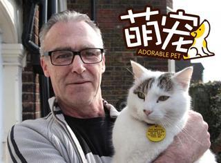 【萌宠】这只在减肥的胖猫身上挂了个牌,上面的字太搞笑