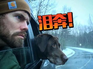 他放弃工作陪癌末狗狗旅行,结果14个月后它还活着