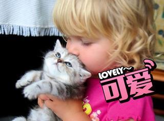 据说猫的头部很好闻,然后日本推出了同款香水