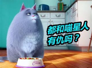 《爱宠大机密》: 这部萌系动画竟敢得罪喵星人!我表示拒绝!