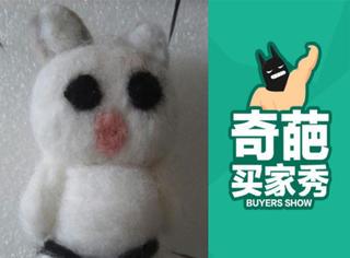 【奇葩买家秀】把猫咪做成这样,手残党还是放弃DIY吧!