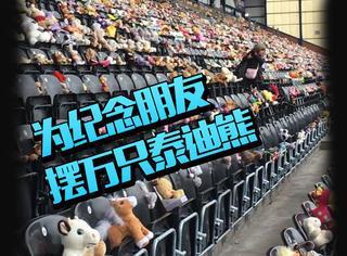 14岁少年为纪念朋友,在体育馆内摆满了10500只泰迪熊