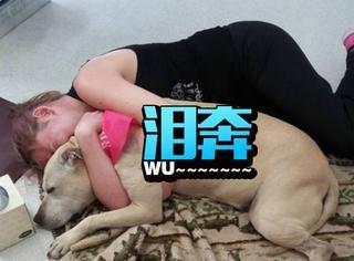 心碎,主人用照片记录爱犬准备安乐死的最后一天
