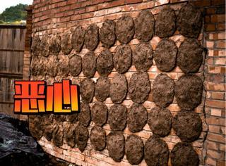 发粪涂墙,男子退租前把出租屋的墙上涂满大便