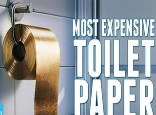 纽约民众排队体验金马桶 1次15美金