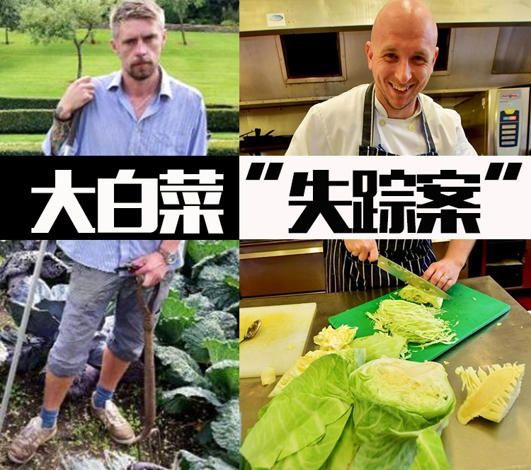 园丁养了一年的巨型白菜神秘失踪,调查结果让人哭笑不得