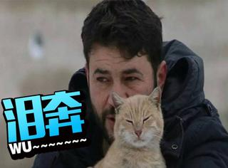 为照顾流浪猫 叙利亚男子放弃逃离战乱城市