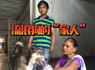 德里住着40万流浪狗,有些傲娇和吃货狗真的要被人们宠上天了…