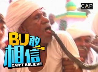 厉害了我的哥,印度老头常年表演被眼镜蛇咬舌头