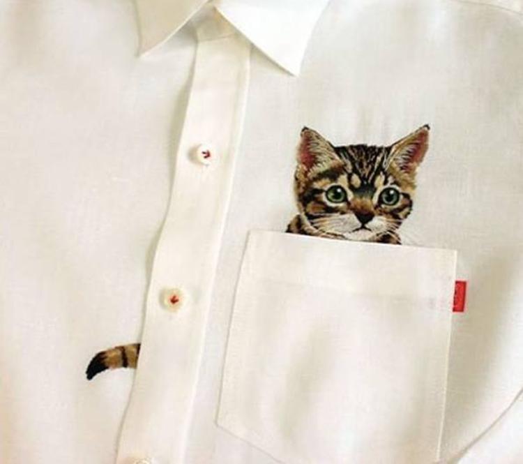 壁池 | 咦,你的衬衫口袋里怎么有一只喵星人?