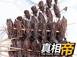 【真相帝】吃土已经过时了,现在流行吃虫!