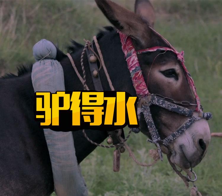 如果10月中国电影还有黑马,那它可能就是这头驴!