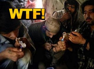 比抽烟吸毒更过瘾,南亚人迷上了抽蝎子