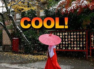 东京时隔50年在11月又下雪,一片白茫茫美呆了