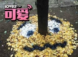 厉害了同学,四川高校学生用树叶堆出表情包!