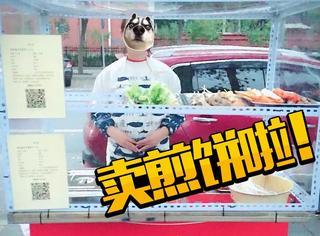 这个北京女白领,买了辆小吃车去街上摆摊卖煎饼了