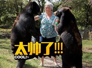 比战斗种族更彪悍,美国奶奶独自饲养两只熊一只虎