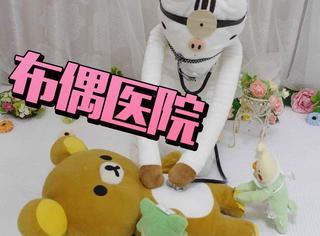 日本这家小医院厉害了,专门医治受伤的布偶