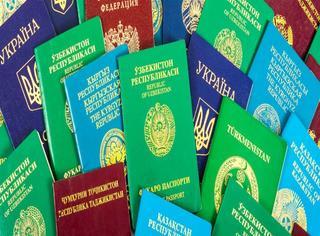 不同颜色的护照代表着不同的意思,你知道为什么新西兰护照是黑色的嚒?
