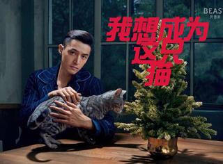 胡歌化身伯爵为朋友选礼物,而我只想成为他怀里的猫!