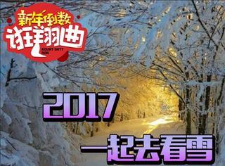 新年倒数诳翔曲13丨2017年一起去世界各地看雪景吧!