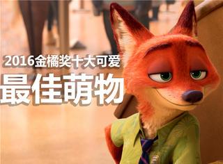 【2016金橘奖】票选年度最佳萌物:《疯狂动物城》《爱宠大机密》,哪个萌到你!