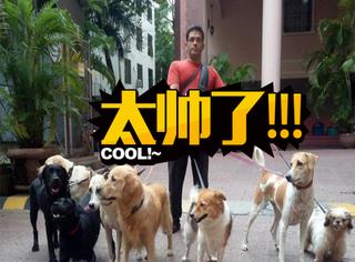 帅气工程师下班变身735只狗狗的老爸,不离不弃的约定让人泪目!
