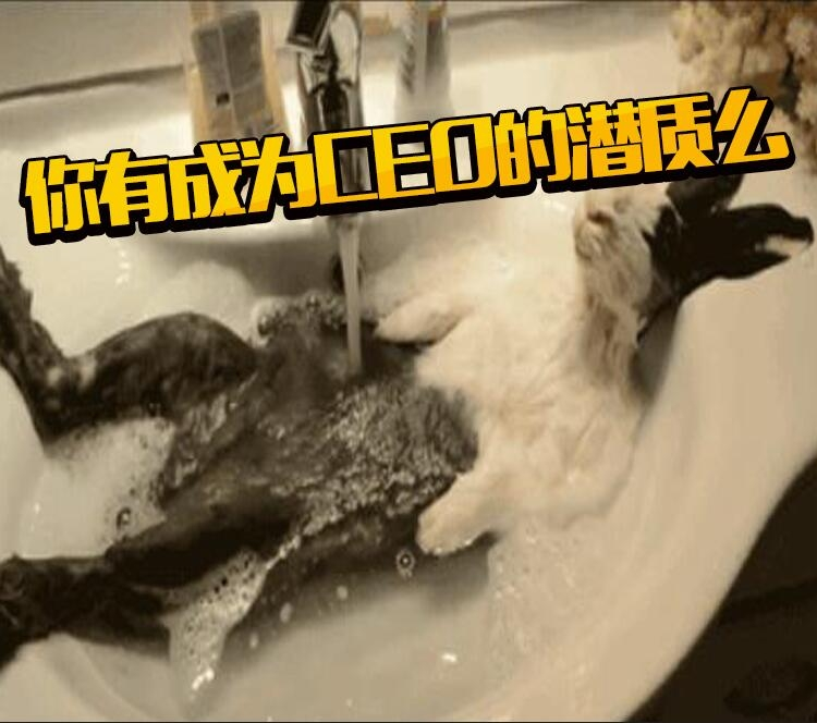 你是如何洗澡的?冲澡兼刷牙的人根本未来CEO啊!!