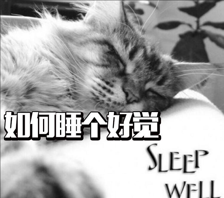 元旦假期如何让自己睡个好觉